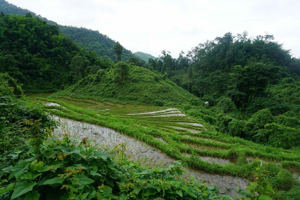 Myanmar Hsipaw'da 3 Günlük Orman Yürüyüşü